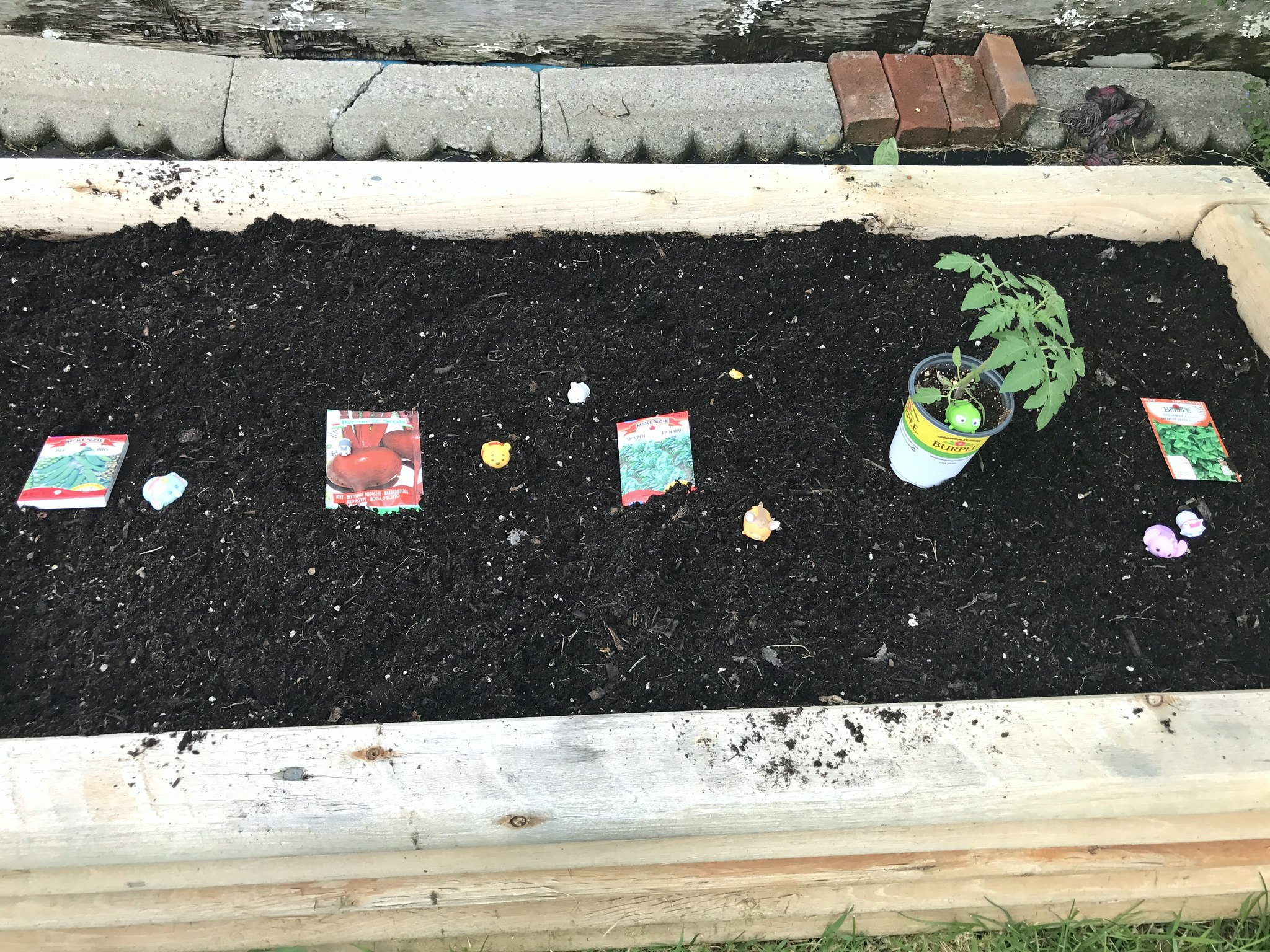 Tsum Tsums Gardening 5