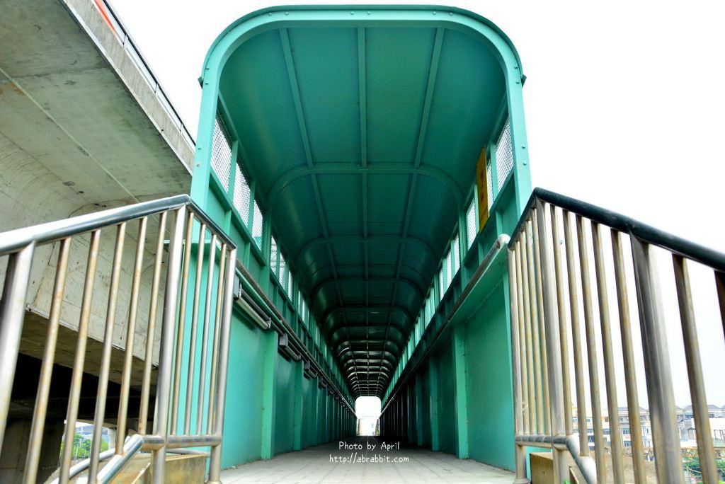34765049862 f5463ca941 o - 台中清水|清水龍貓隧道、田邊荷花池、三太宮塗鴉牆、綠色天橋隧道