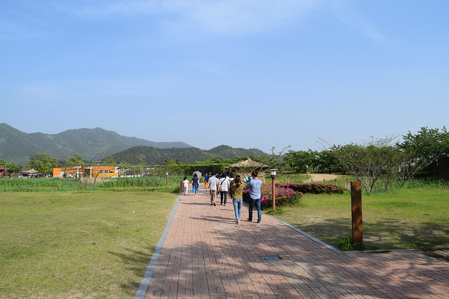 Suncheon Bay Wetland (2)