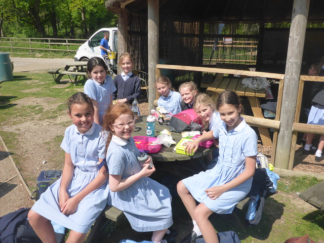 Year 5 Trip to Port Lympne 2017