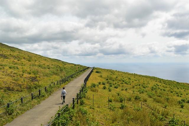 八丈富士の麓に広がる牧場風景