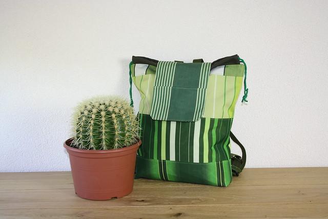 rugzak en cactus