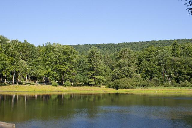 Penn-Roosevelt State Park