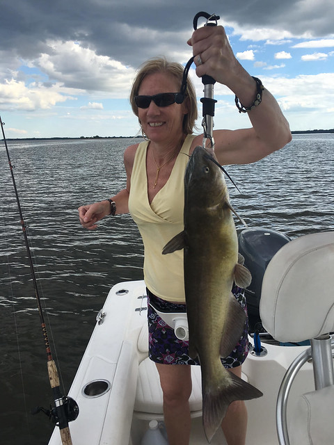 Weekly fishing report june 7 for Nj fishing reports freshwater