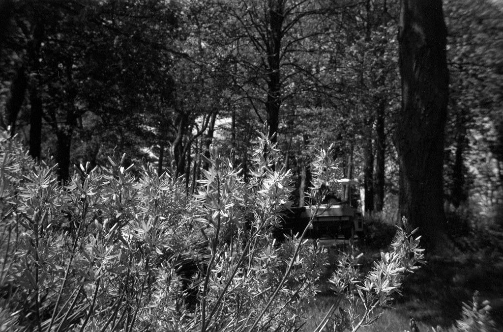 CCR Review 64 - Kodak Pony 135 Model C