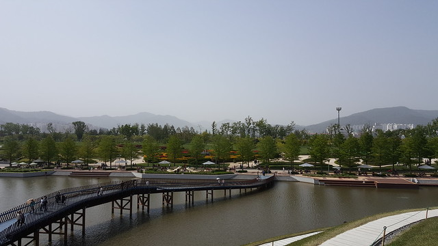 Suncheon Bay National Garden (9)