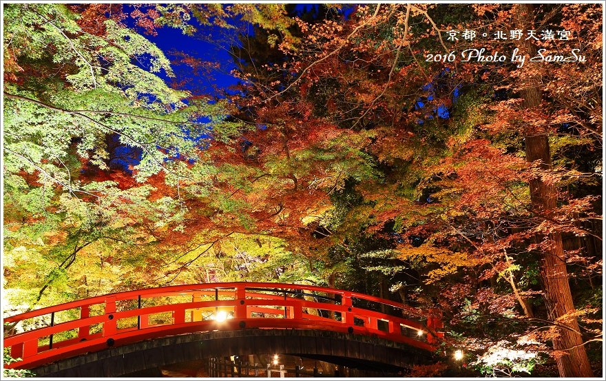 京都紅-北野天滿宮_2016.11.24