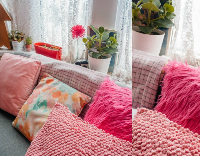 cushions on sofa with plants in background