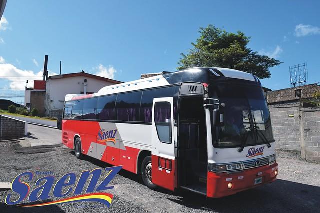 sanezz47