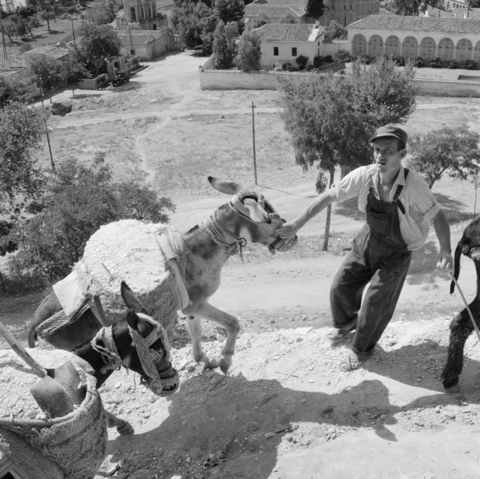 Subiendo arena con burros al Paseo de Recaredo hacia 1960. Fotografía de Eugene V. Harris o Clarence Woodrow Sorensen © University of Wisconsin-Milwaukee/The Board of Regents of the University of Wisconsin System