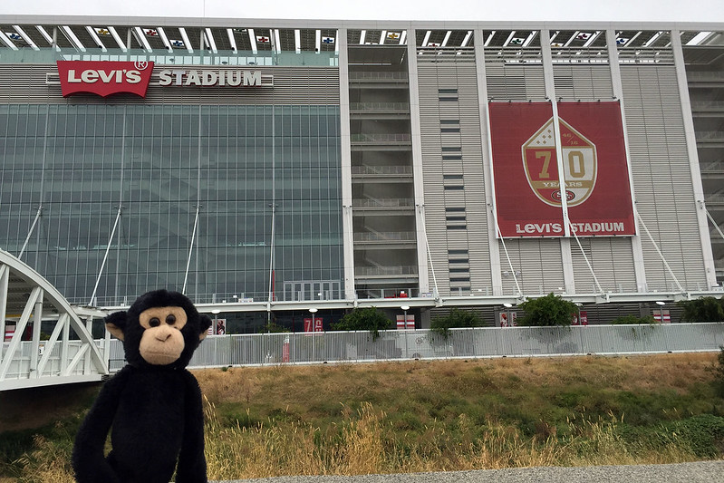 Monkey at Levi's Stadium