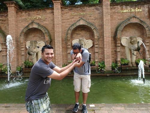 chiang-mai-zoo-2