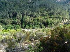 Le Finicione depuis le chemin après la traversée du ravin de Pinetu Pianu