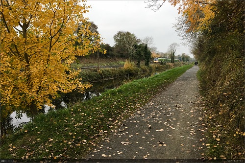 Autumn on the Royal Canal | by bbusschots
