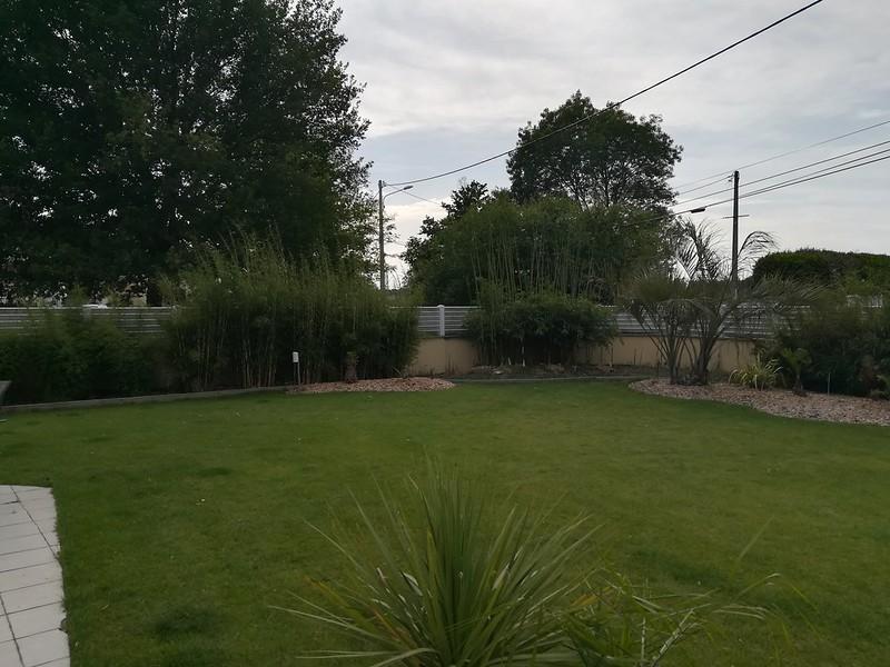 le forum des fous de palmiers 33 jardin exotique de dinoso. Black Bedroom Furniture Sets. Home Design Ideas