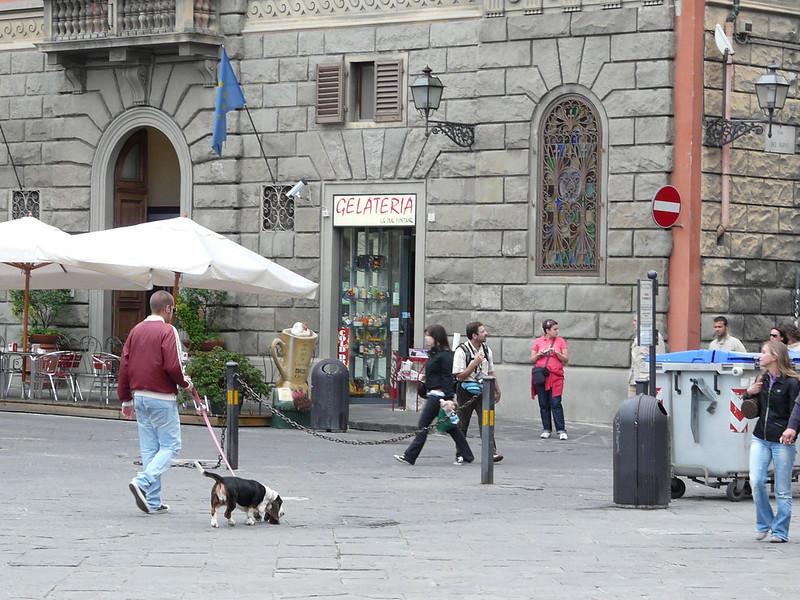 Piazza della Ss Annunziata, Florença