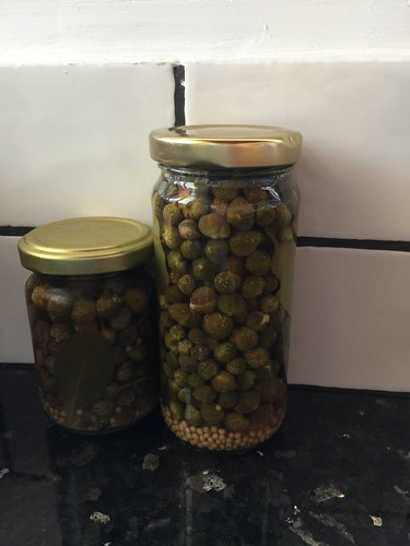 Pickling capers
