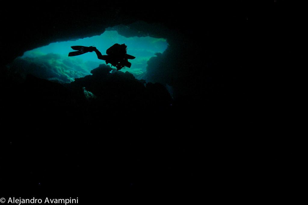 Cenote Eden - Riviera Maya - Península de Yucatán - México