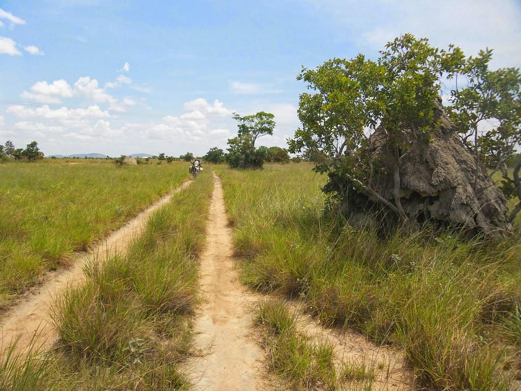 Brasil - Rota das Fronteiras  / Uma Saga pela Amazônia - Página 2 34709373692_3449e62c39_b