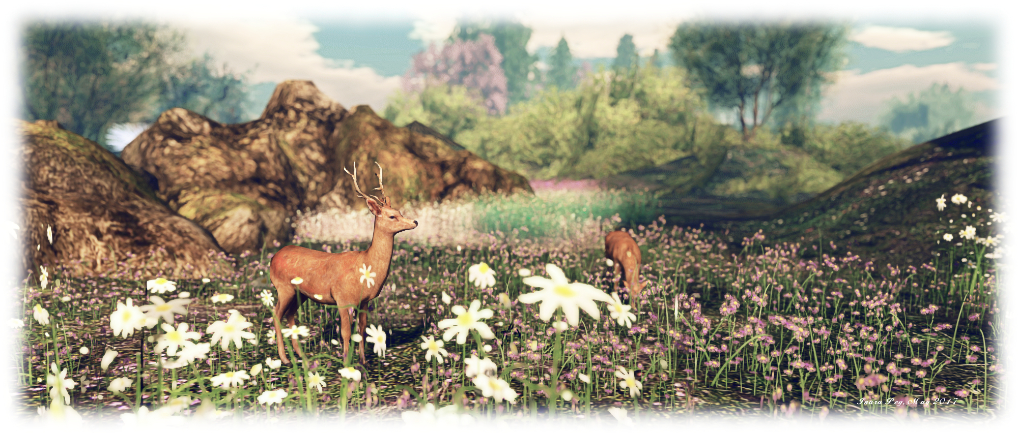 Meadow Rose III, Tyme; Inara Pey, May 2017, on Flickr