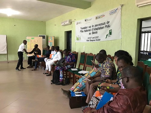 NAP workshop Benin - April 2017