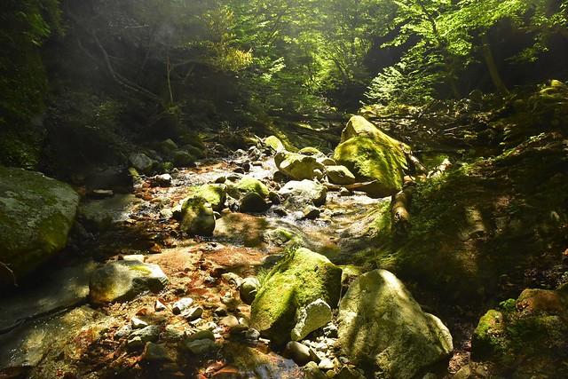畦ヶ丸 渓流登山