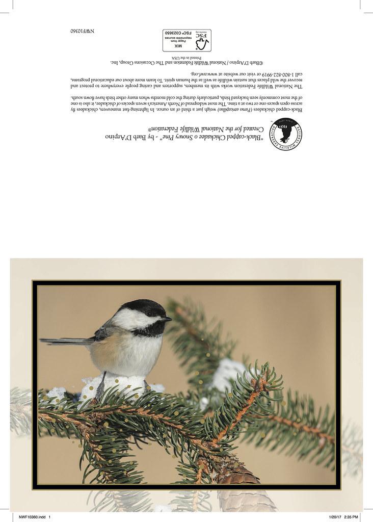 Christmas Card 2017 National Wildlife Federation   Chickadee…   Barb ...