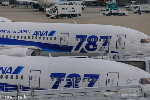 LR-1169-2.jpg
