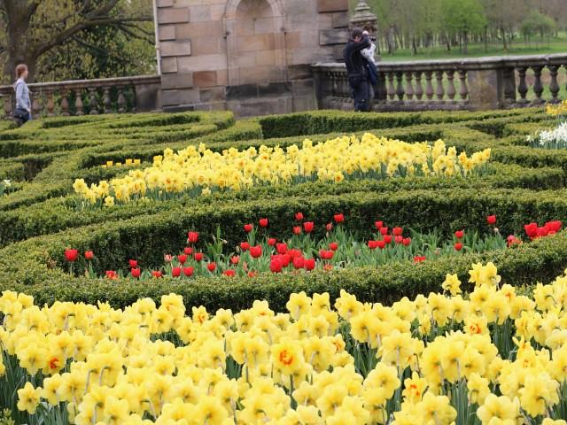 pollok park obiective turistice Glasgow 5