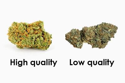 marhuana buena vs. marihuana mala