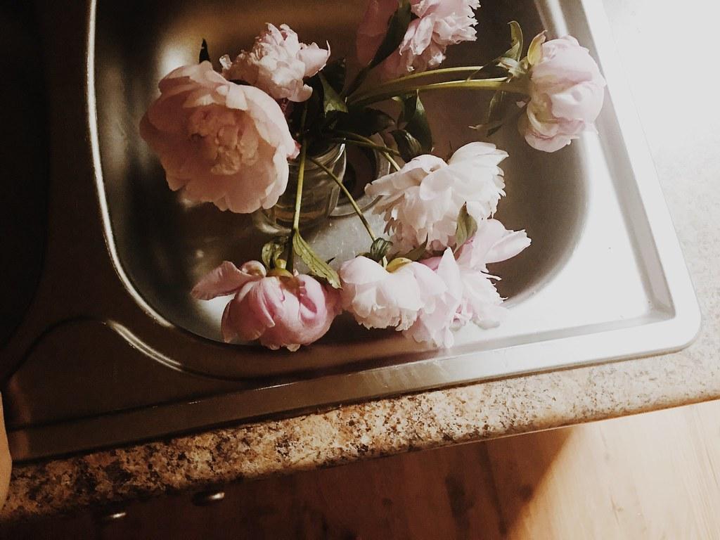 flowersfromchristinasflowergarden05232017