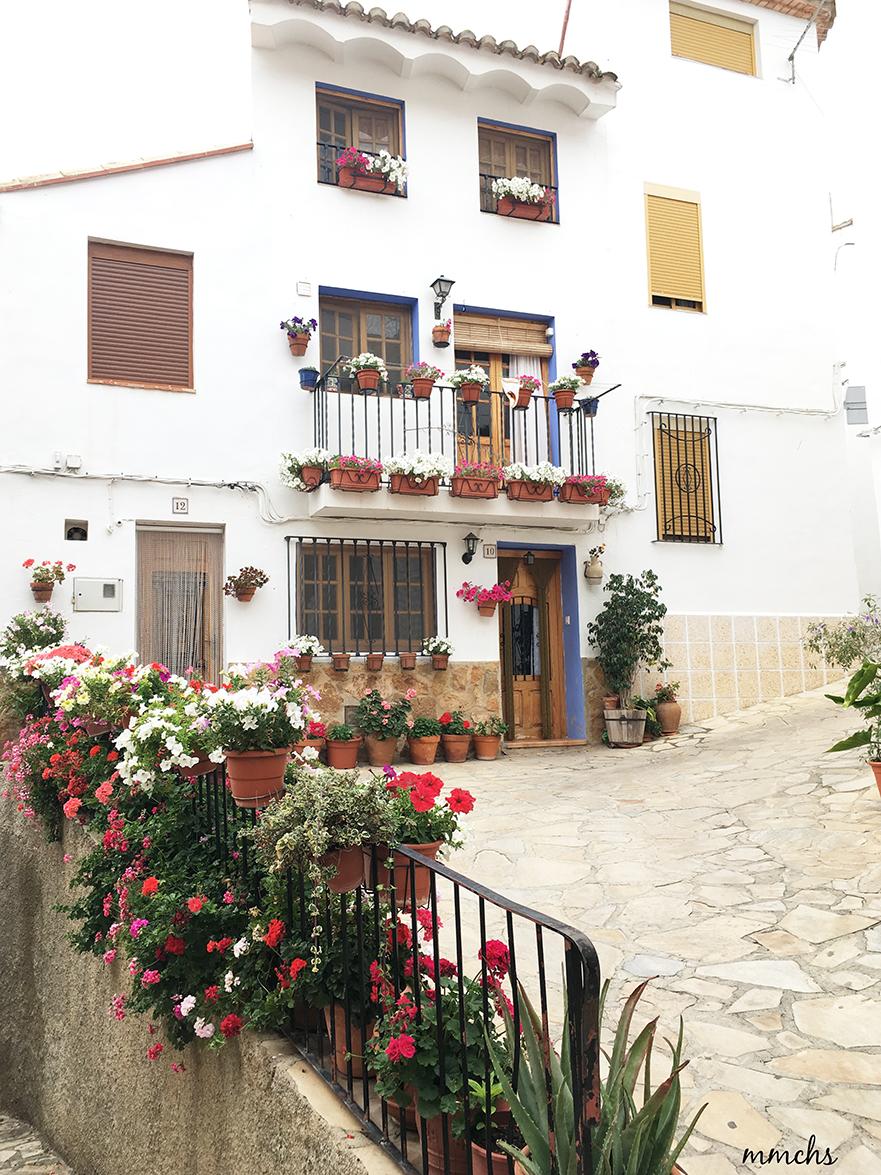 casas con flores colgadas
