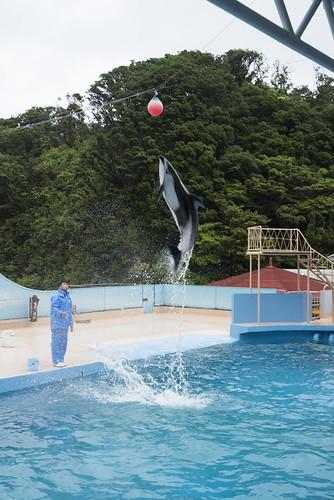 Shimoda Floating Aquarium