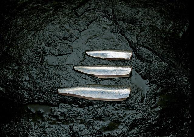Kalat ja kalajalosteet