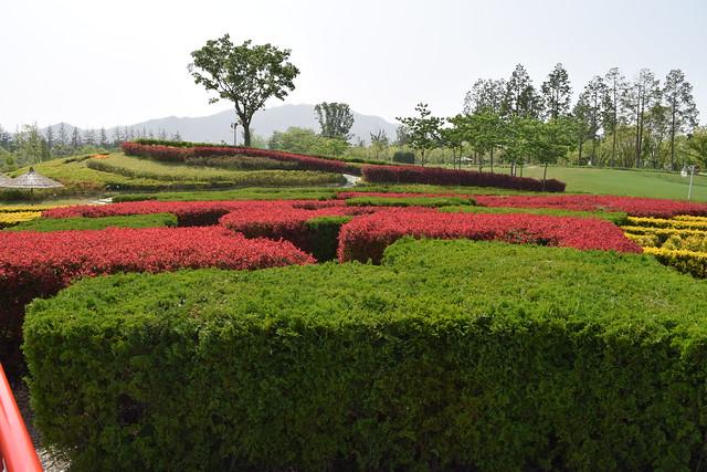 Suncheon Bay National Garden (20)