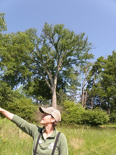 Spot Birding by Penny O'Connor