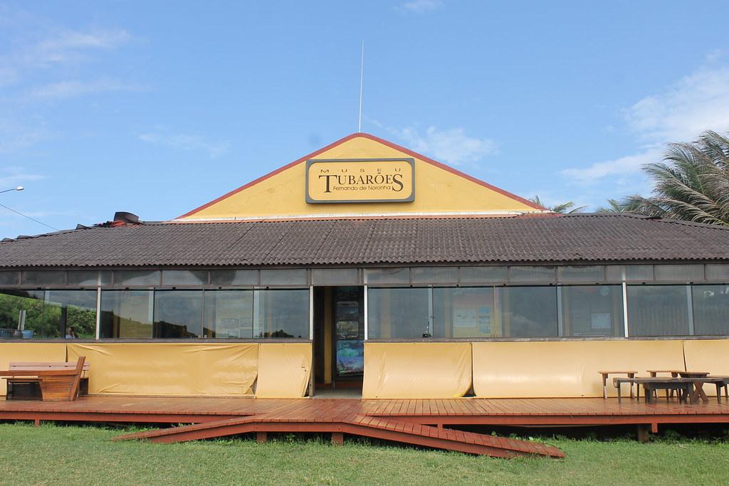 museu-tubarao2
