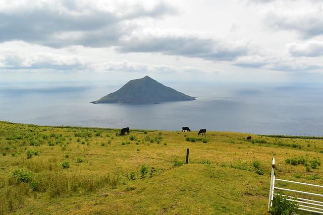 八丈島 牧場の牛と八丈小島