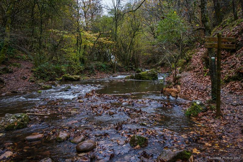 Punto donde cruzar el Iñarbegi para ir al pie de la Cascada de Xorroxin