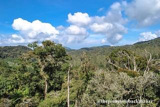 cameron highlands mountain