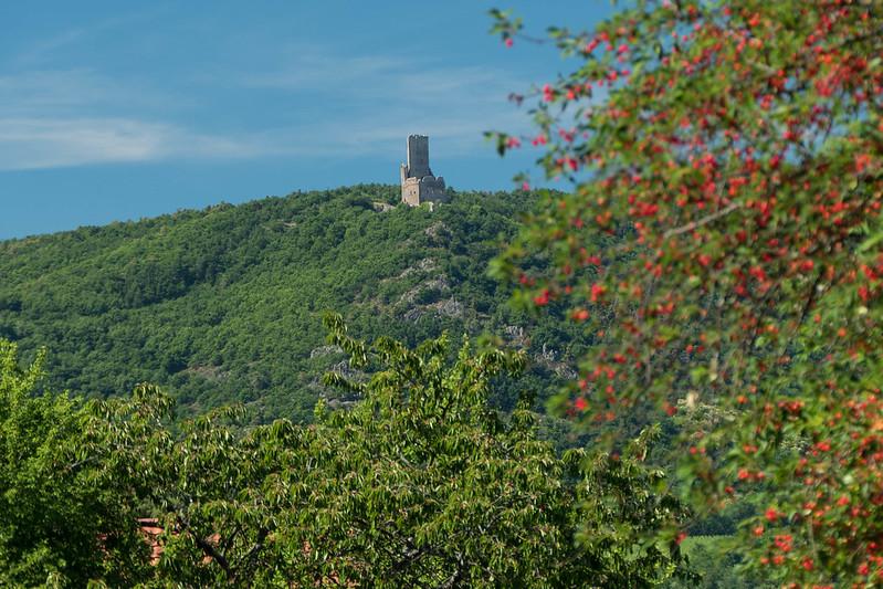 La cerise sur le chateau ou le chateau sur la cerise 35262859952_5148129e7d_c