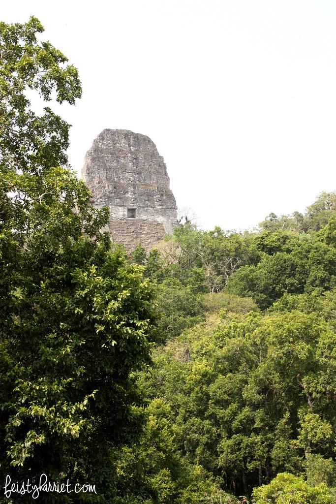 Tikal Guatemala_feistyharriet_April 2017 (6)