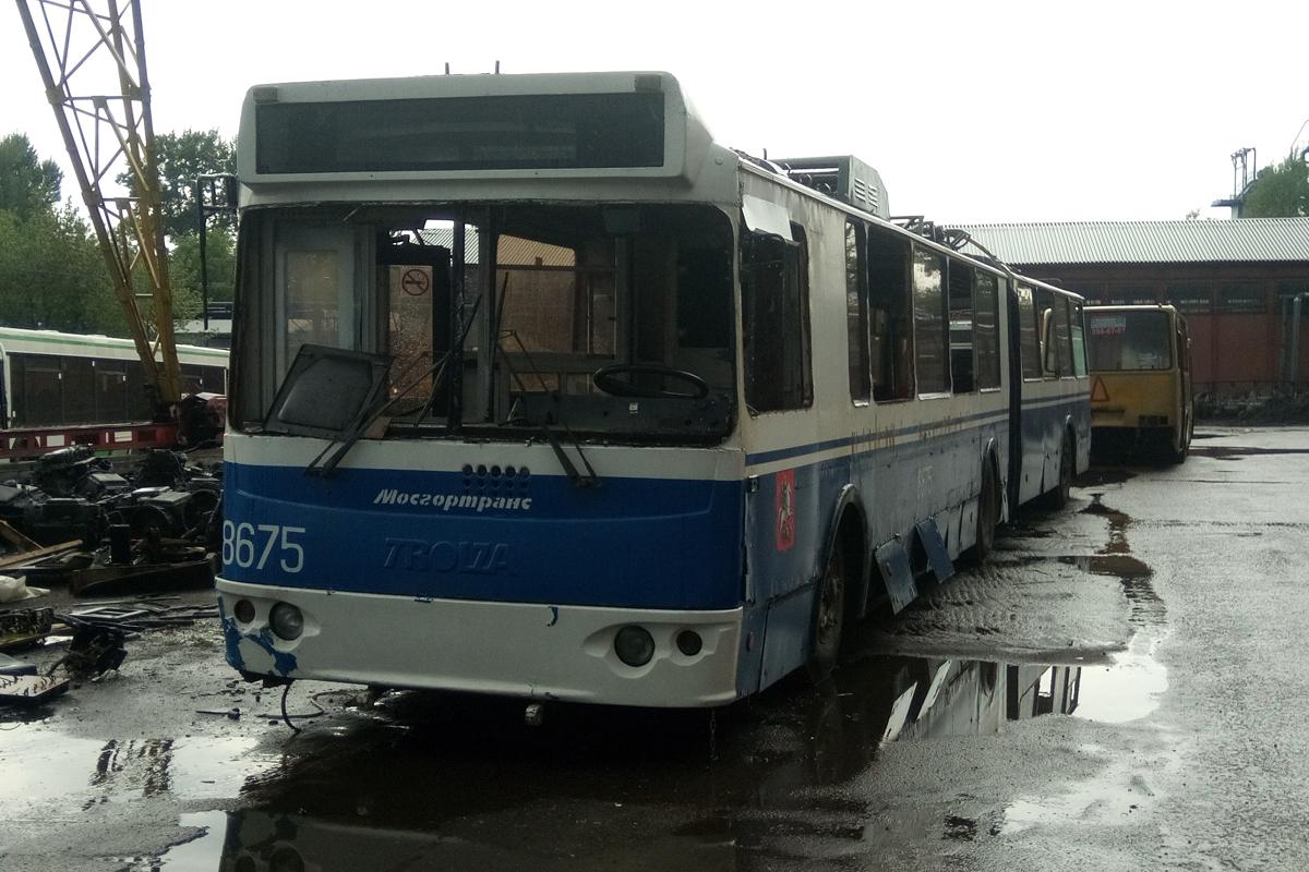 Trolza-62052