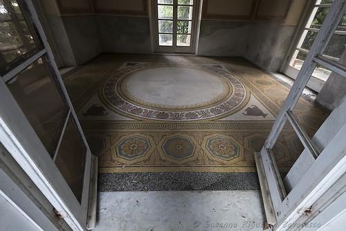 Villa Durazzo Pallavicini: Coffee House (pavimento: interno)