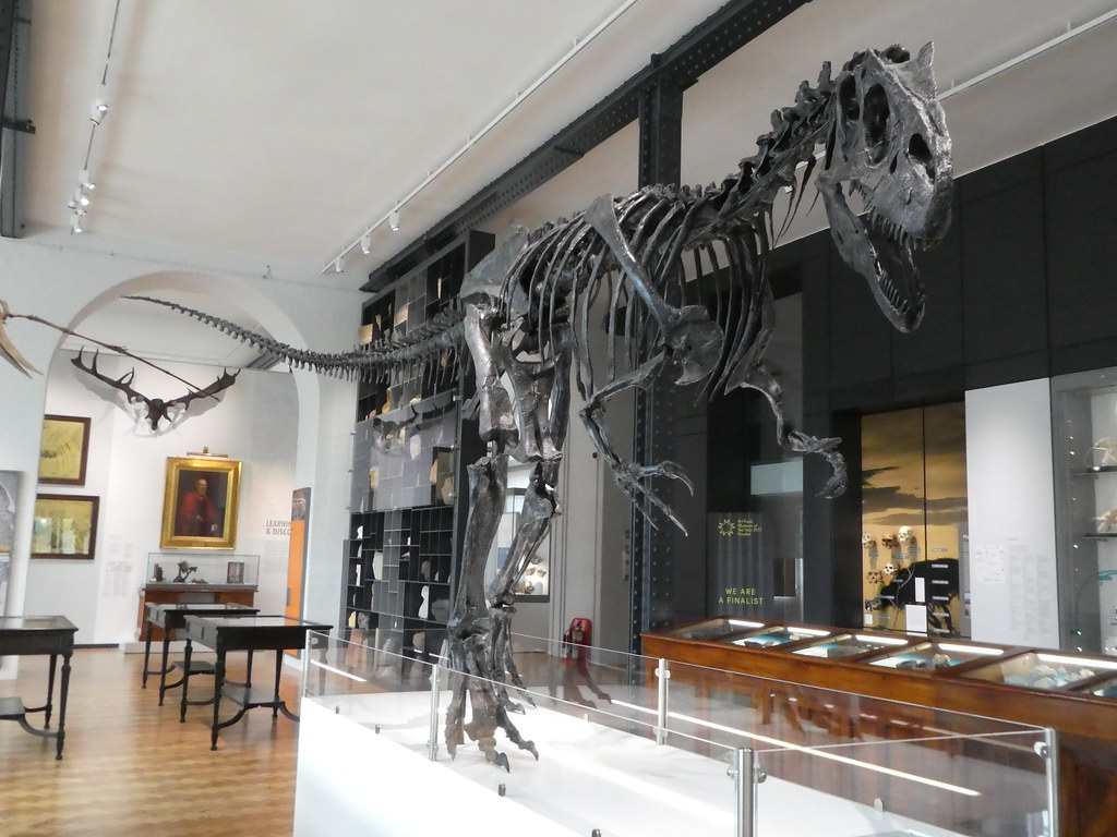 Lapworth Museum of Geology, University of Birmingham