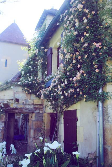Jardin floral d'Apremont sur Allier (25)