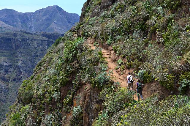Route to Punta de Hidalgo, Anaga, Tenerife