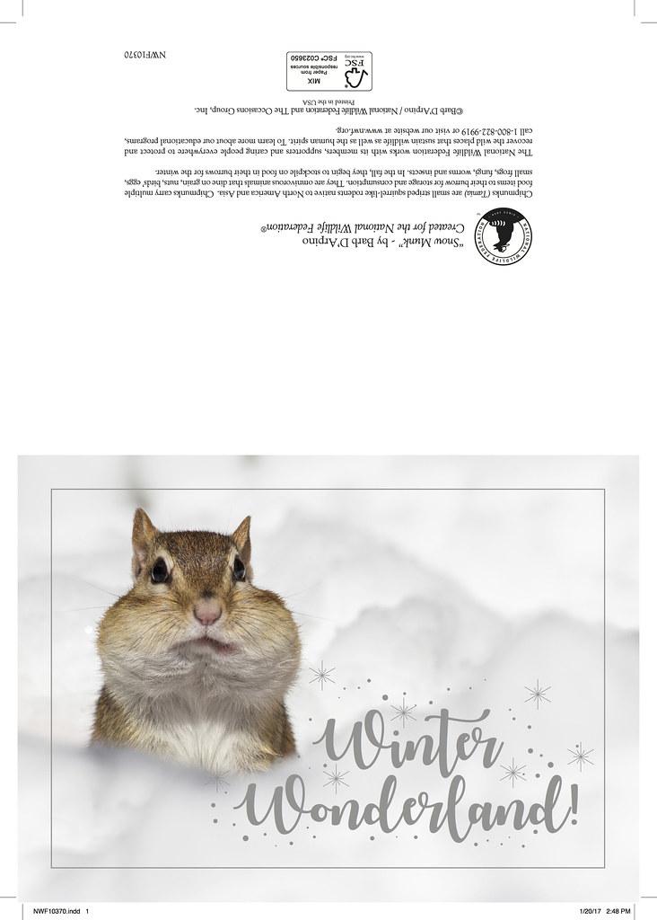 2017 Christmas card National Wildlife Federation   Snowmunk …   Barb ...