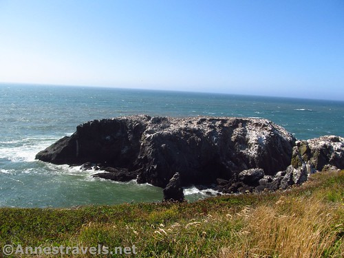 Views toward the end of Yaquina Head from near the lighthouse at Yaquina Head Outstanding Natural Area, Oregon