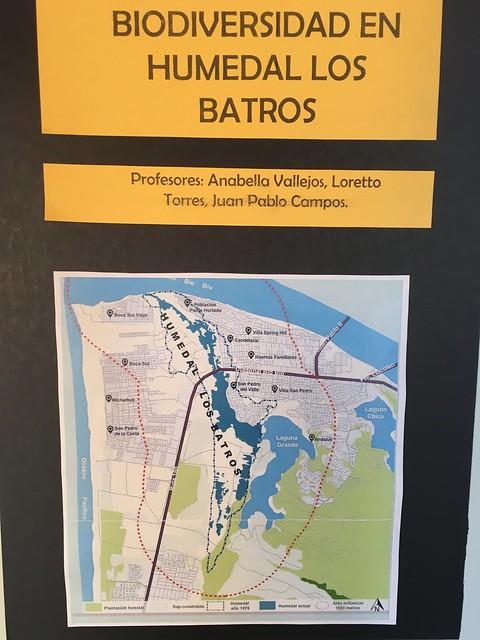 Muestra interdisciplinaria: Biodiversidad Humedal Los Batros